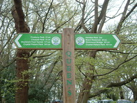 A signpost in Queen's Wood giving a choice of routes to Crystal Palace