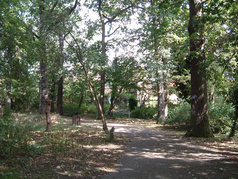 The Downham Woodland Walk
