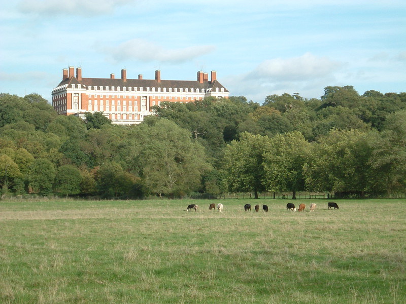 The view towards the Star and Garter Home from the Thames Path at Petersham Meadow