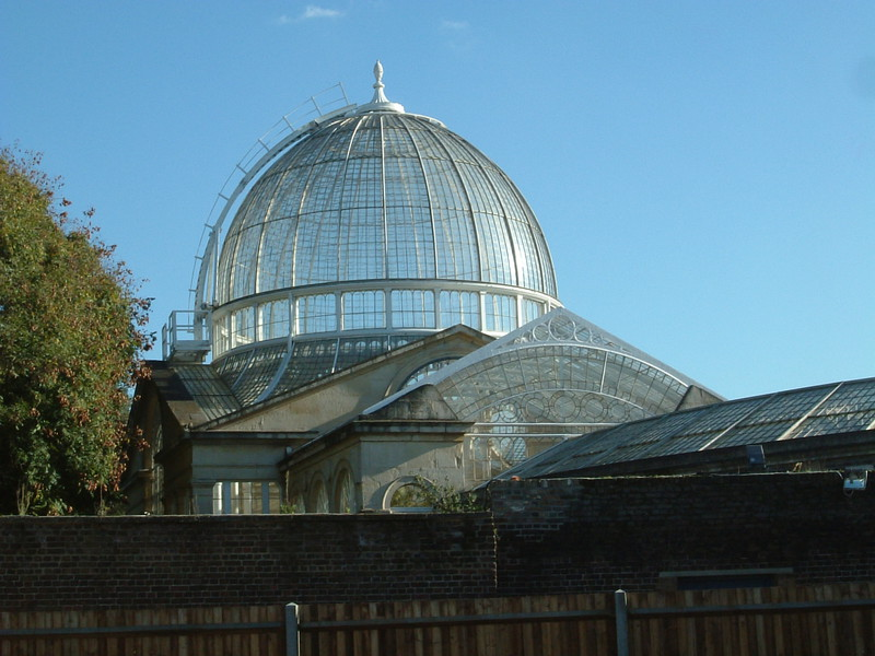 The main conservatory, Syon House