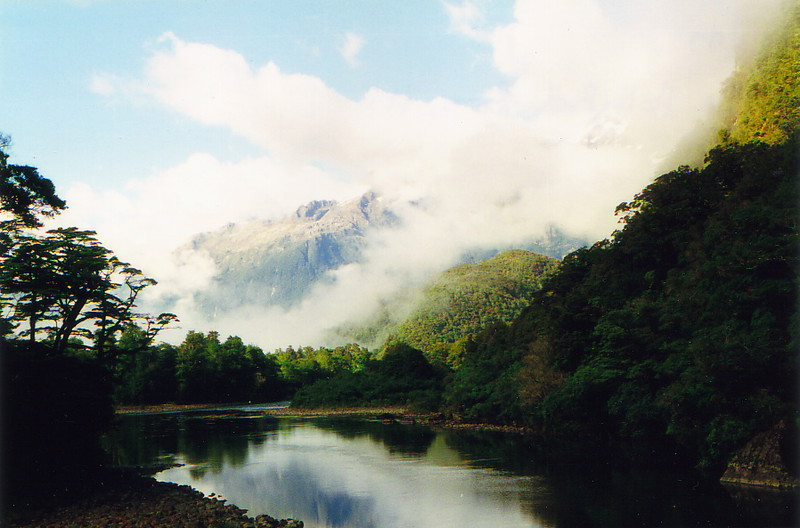 The Hollyford River