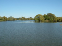A lake nect to the River Roding