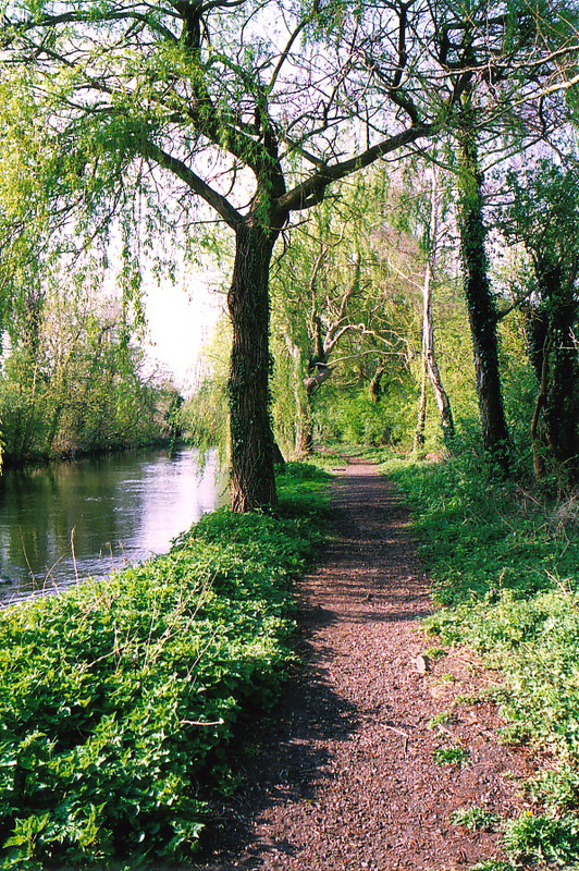 The River Colne