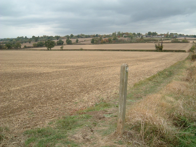 View across fields towards Chigwell