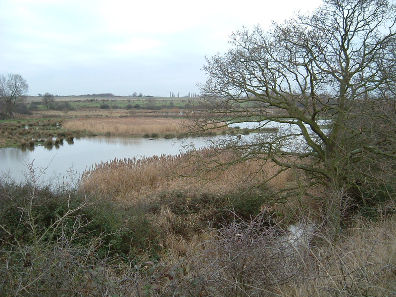 The marshes of Hornchurch Country Park