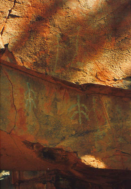 Aboriginal rock art near the George River